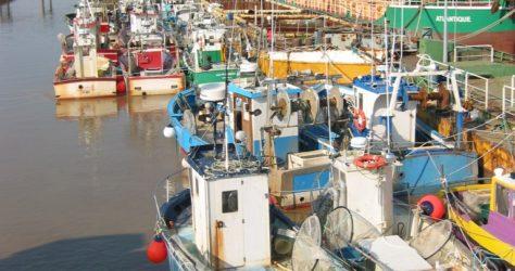 Navires de pêche civelliers au tamis à Fromentine