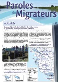 Paroles de Migrateurs n°11