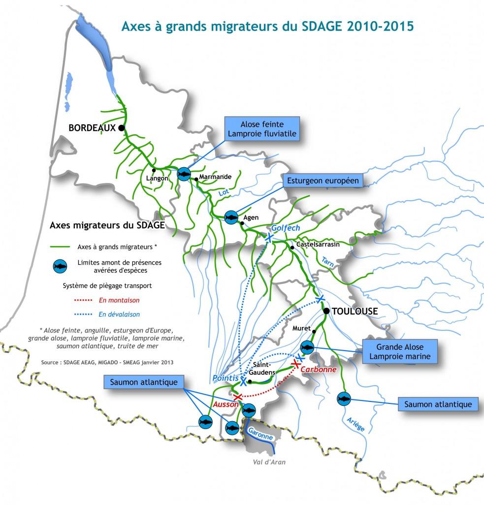 """Axes """"Migrateurs"""" de la Garonne"""