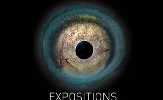 Exposition : La vie mystérieuse des anguilles