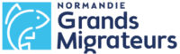 Un observatoire pour les poissons migrateurs de Normandie