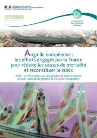 5 années de mise en oeuvre du plan Anguille français