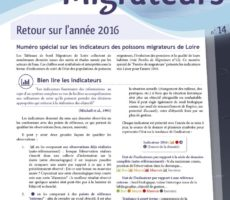 Paroles de Migrateurs N14