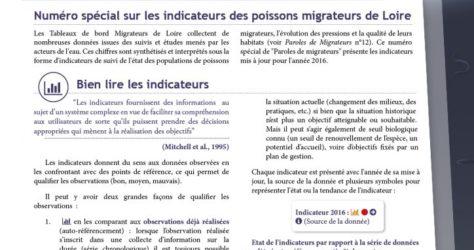 Paroles de Migrateurs N14