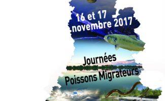 «Journées Poissons Migrateurs» de Rhône-Méditerranée, les 16 et 17 novembre à Avignon