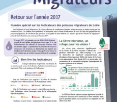 Paroles de Migrateurs N16
