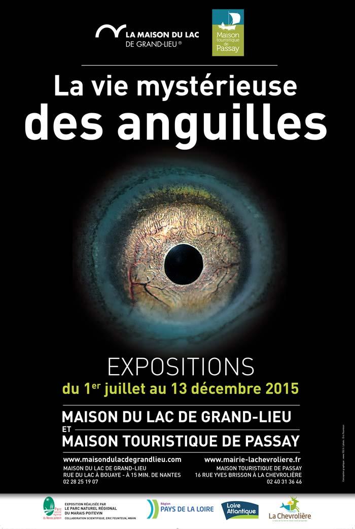 exposition-anguilles-GdLieu