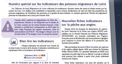 Paroles de Migrateurs N18_couv